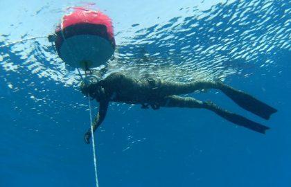 אימוני-צלילה-חופשית